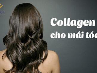 Collagen tốt cho tóc như thế nào